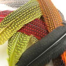 UFS Crafts: Pintada Plumas X 12 piezas mixtas color paquete Ideal Para Artes Crafts