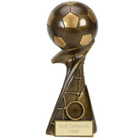 Football Trophy award Full 3 D Ball in 5 Sizes Free Engraving up to 30 Letters
