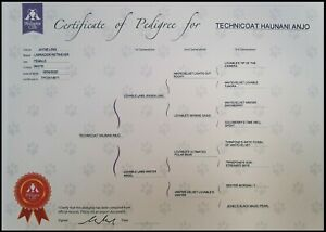 3 Generation Pedigree form Complete Custom Printed on Quality Card for Puppy