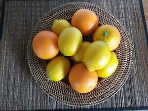 Artificial Faux Fake Fruit 10 Item Bundle 4 Oranges 6 Lemons