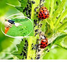 Organic Insecticide Concentrate Weed & Pest Control | Yard, Garden & Outdoor