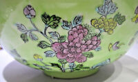 Enamel over Porcelain Hh Decorative Bowl