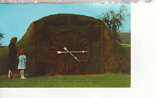 Floral Clock  Greenfield Village  Dearborn Michigan Chrome Postcard 1157
