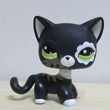 Colección De Littlest Pet Shop Lps Juguetes Gato de pelo corto Blythe Raro Negro S49