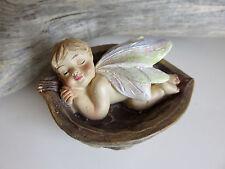 Baby Fairy Miniature Garden Faerie Village Sleeping in Walnut Resin New2.75 in.