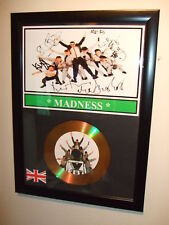 MADNESS   SIGNED   GOLD DISC  DISPLAY 1