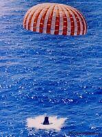 8x10 Print NASA Project Mercury Joe  Sam Launched Rhesus Monkey 1959 #5501245A