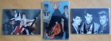 Stray Cats Set of 3 large flexi magnets