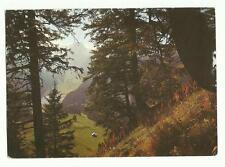 Swiss Radio International, Switzerland QSL card, Lake of Samtis 1979