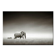 Canvas Prints Living Room Elephant And Zebra Wall Art Canvas Painting-No Frame
