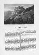 Catedrales Castillo Merionethshire - 2x Antique imprime 1818