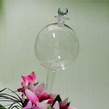 Durstkugel Bewässerungskugel Wasserspender Klar Glas Stopfen Top Qualität