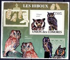 Southern white-faced Owl, Birds of Prey, Comoros 2009 MNH Delux Sheet