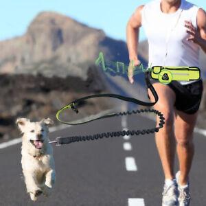 Hands Free Dog Leash for Walking Running Hiking Jogging Training