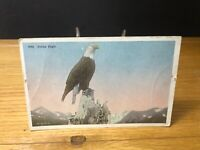 1910 Valdez Mail Leaving Eagle Alaska Woodruff Photographer RARE POSTCARD