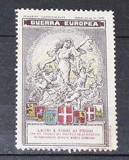 DELANDRE CINDERELLA 1915 ITALIE GUERRE 14-18 MARUCELLI MARCHE NAZIONALISTE