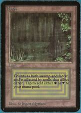 Bayou Alpha HEAVILY PLD Land Rare MAGIC THE GATHERING CARD (ID# 103605) ABUGames
