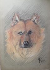 More details for spitz chow chow type 1926 crayon pastel dog drawing on card