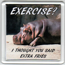 FRIDGE MAGNET Quotes Saying Gift Present Novelty Funny EXERCISE? MORE FRIES
