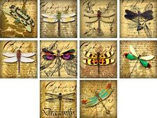 "10 vintage altered art dragonfly 2"" cards blank with envelopes and organza bag"