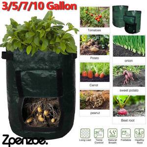 3G-10Gallon Potato Tomato Grow Plant Bag Home Garden Vegetable Planter Container