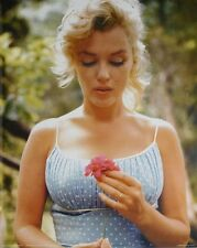 Marilyn Monroe Decorative Posters Amp Prints Ebay