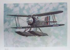 OLD PRINT FAIREY AIRCRAFT FLYCATCHER AMPHIBIAN SEAPLANE c1920's SINGLE SEATER