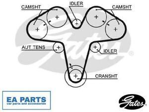 Timing Belt for ALFA ROMEO LANCIA GATES 5476XS