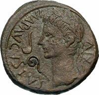 AUGUSTUS Authentic Ancient 8BC Caesaragusta Spain RARE Roman Coin w BULL i85182