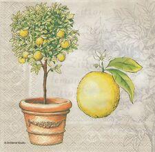 2 Serviettes papier Agrume Citron Citronnier Decoupage Paper Napkins Lemon Tree