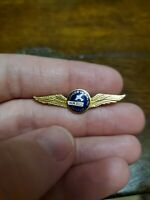 Military Very Rare Ward Pioneer in Airline Training wings Pin 20 yr Peters