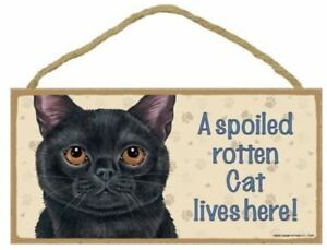 """A Spoiled Rotten Cat Lives Here Sign Plaque 10"""" x 5"""" black brown orange grey"""