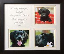 In Loving Memory, Personalised Pet Photo Frame Black 12 x 10 Cat Dog Animals