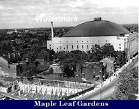 NHL 1930's Toronto Maple Leafs Maple Leaf Gardens  8 X 10 Photo Free Shipping