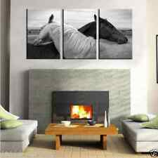 Hd print canvas household adornment art on canvas.Black and white horse realism