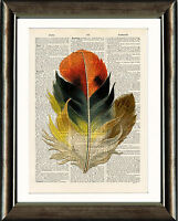 Old Antique Book page Art Print - Vintage Feather 6 Dictionary Page Wall Art
