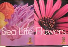 Lot of 2 NEW Go Facts Science: Sea Life & Flowers Newbridge Paperbacks Ages 6-9