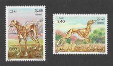 Dog Art Body Portrait Postage Stamp SALUKI SLOUGHI Algeria Africa 1983 2 x MNH
