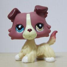 Littlest Pet Shop Collection LPS #1262 Plum Cream Collie Puppy Dog Toys A1