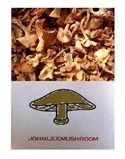 Wild Chanterelle dried 320 grams