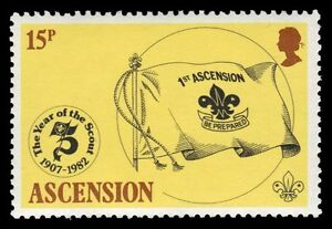 "ASCENSION 302 (SG310) - Scouting Year ""Ascension Scout Flag"" (pf96716)"