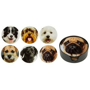 Dog Face Round Glass Coasters  Set of 6 in Holder