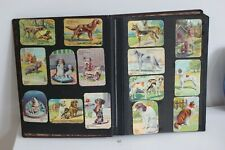 Album 311 Images Animaux Biscuits Chocolats Victoria Collection Chromo Pub