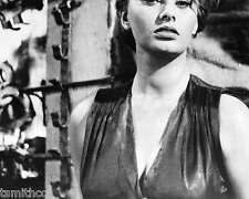 Sophia Loren 8x10 Photo 039