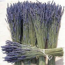 Lavendel Strauß 100 Stk Lavendelbund Lavendelstrauß Getrocknet Blumenstrauß
