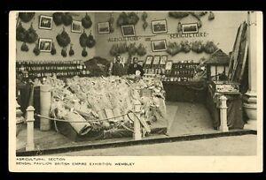 British Empire Exhibition Bengal Pavilion Agriculture Section Tuck vintage PPC
