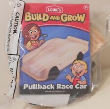 Model RACE CAR #88 DALE EARNHARDT JR Lowe's Build and Grow Wooden Kit with Patch