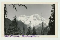 STUNNING 1940s RPPC Real Photo Postcard Mt Ranier Washington State Majestic View