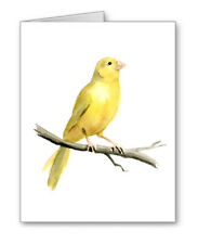 Canary Note Cards With Envelopes