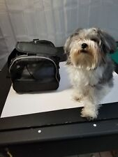 New listing Pet Carrier for a Toy Dog or Small Cat